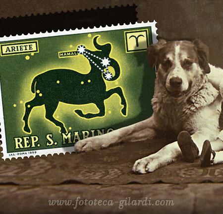 ZOOdiaco: Ariete. Francobollo delle Poste di San Marino e fotografia 1910 circa - elaborazione ©Fototeca Gilardi