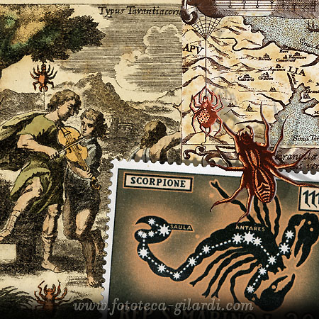ZOOdiaco - Scorpione - tarantismo da 'Phonurgia Nova ...' di Attanasio Kircheri, elaborazione ©Fototeca Gilardi