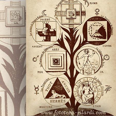 raffigurazione dell'Albero della Vita, elaborazione ©Fototeca Gilardi